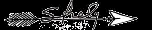LOGO-STRELA-ART-2